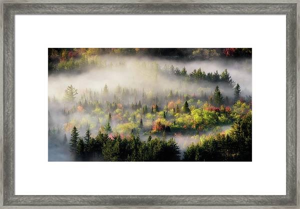 Fall Fog Framed Print