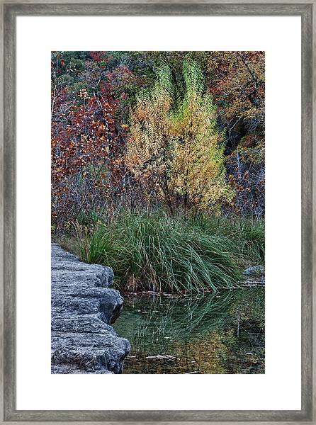 Fall Foliage Reflections At Lost Maples Framed Print