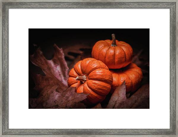 Fall Fruits Framed Print