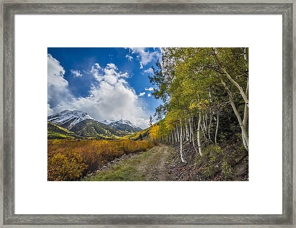 Fall In Colorado Framed Print