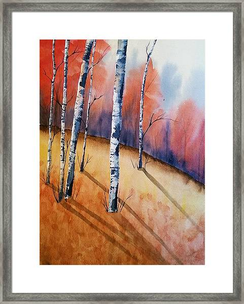 Fall In The Birches Framed Print