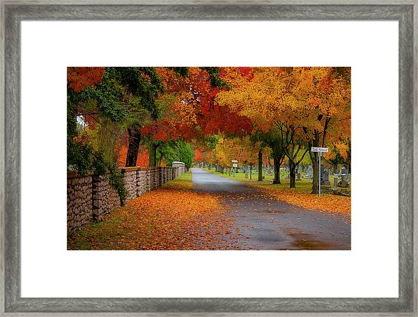 Fall In The Cemetery Framed Print