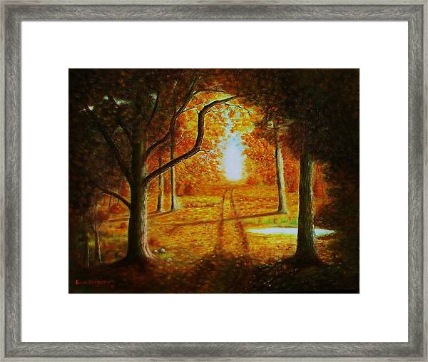Fall In The Woods Framed Print