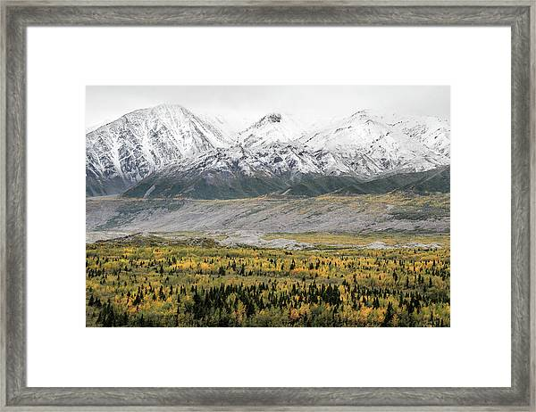 Fall In Wrangell - St. Elias Framed Print