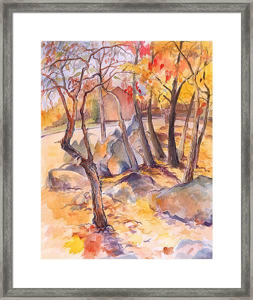 Fall Light 2 Framed Print