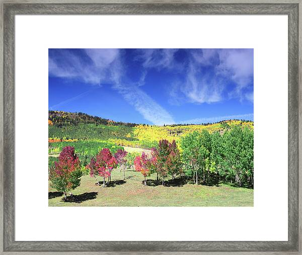 Fall On County Road 12 Framed Print