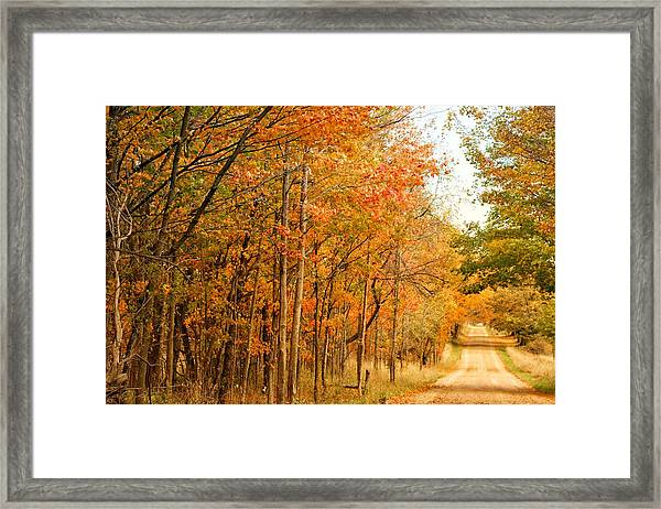 9012 - Fall On Murphy Lake II Framed Print