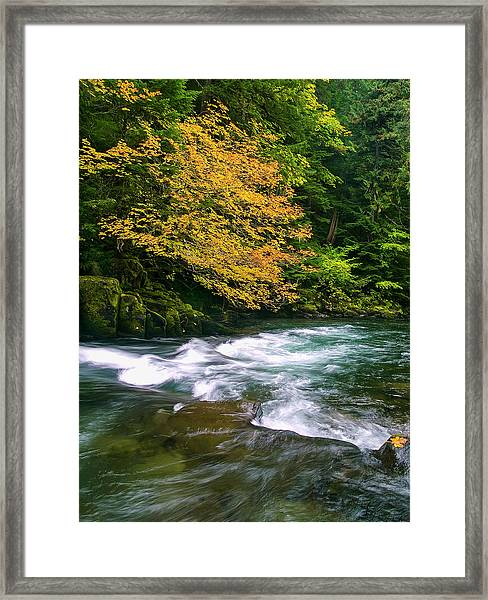 Fall On The Clackamas River, Or Framed Print