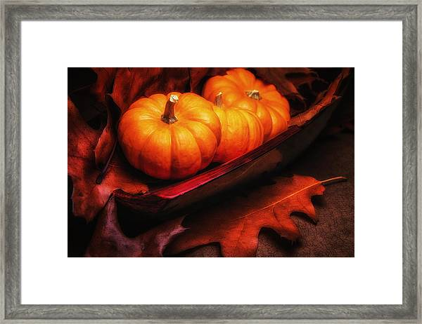 Fall Pumpkins Still Life Framed Print