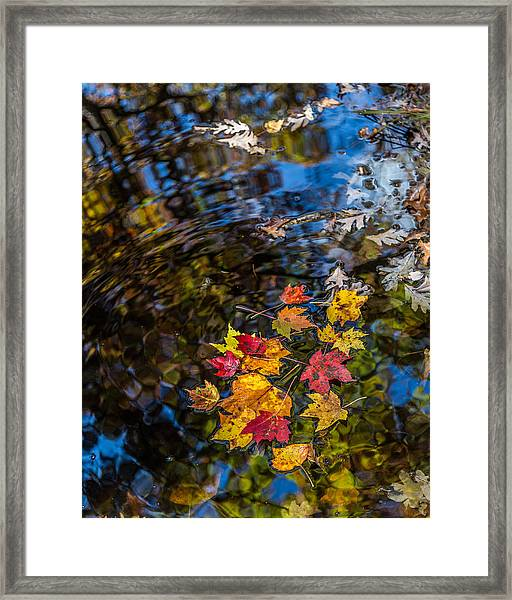 Fall Reflection - Pisgah National Forest Framed Print