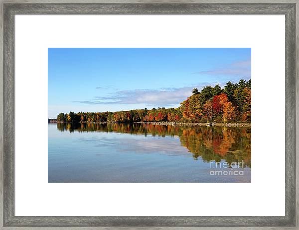 Fall Tree Reflections Lake Sabago Maine Framed Print
