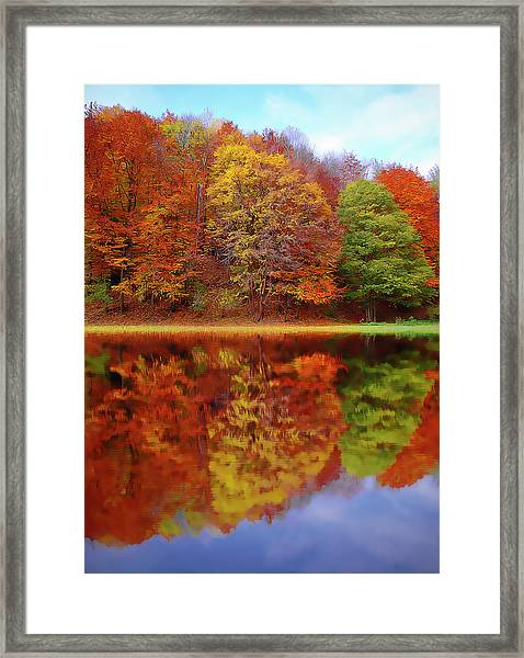 Fall Waters Framed Print