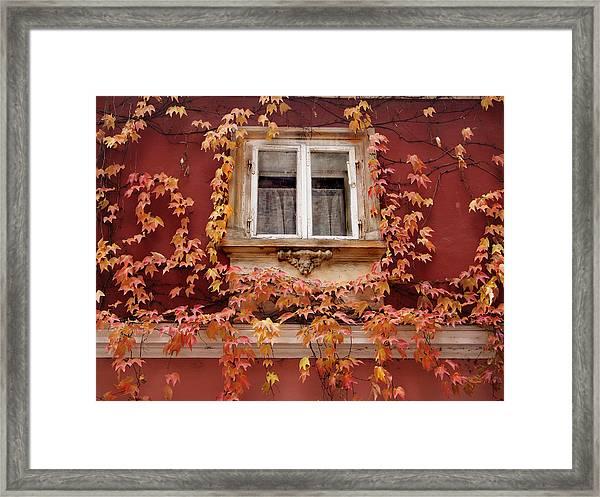 Fall Window,prague Framed Print