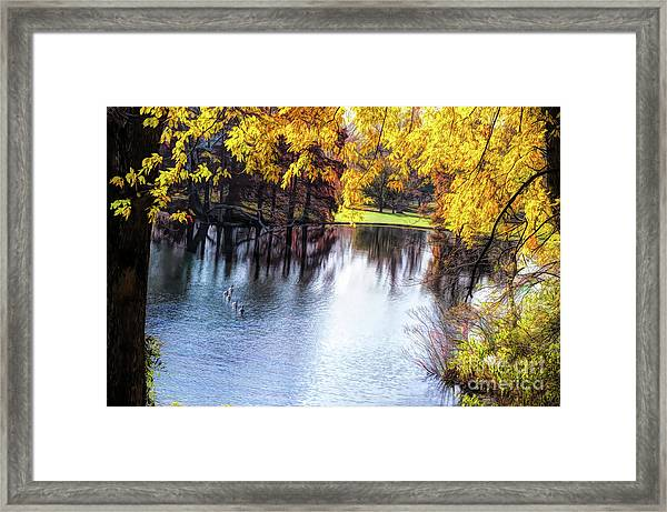 Fall Yellow Boarder Framed Print