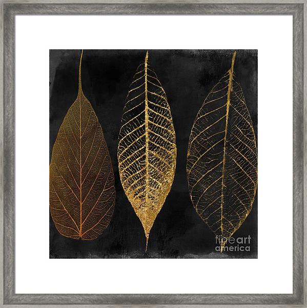Fallen Gold II Autumn Leaves Framed Print