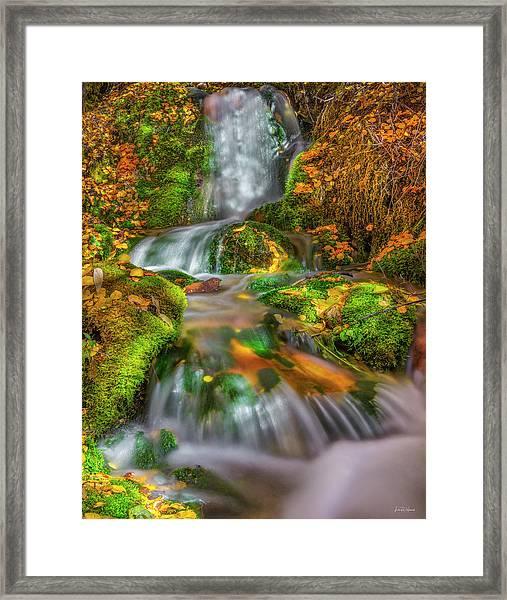 Fallert Creek Autumn Framed Print by Leland D Howard
