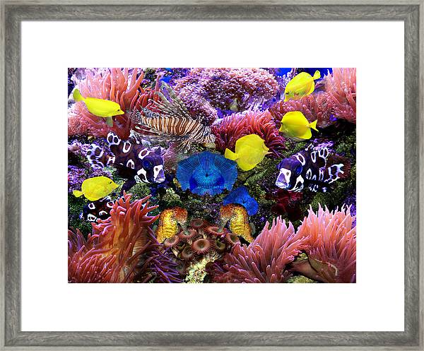 Fantasy Aquarium Framed Print