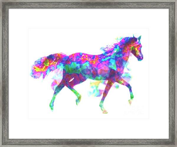 Fantasy Horse Framed Print