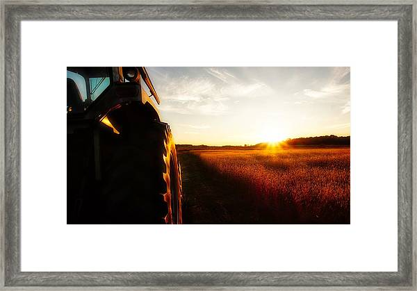 Farming Until Sunset Framed Print