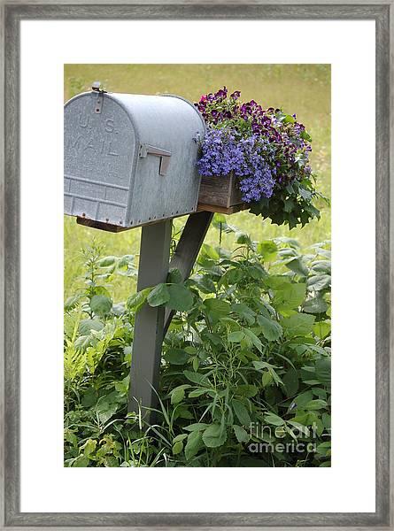 Farm's Mailbox Framed Print