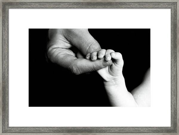 Father Holding Hand Of Baby Framed Print by Sami Sarkis