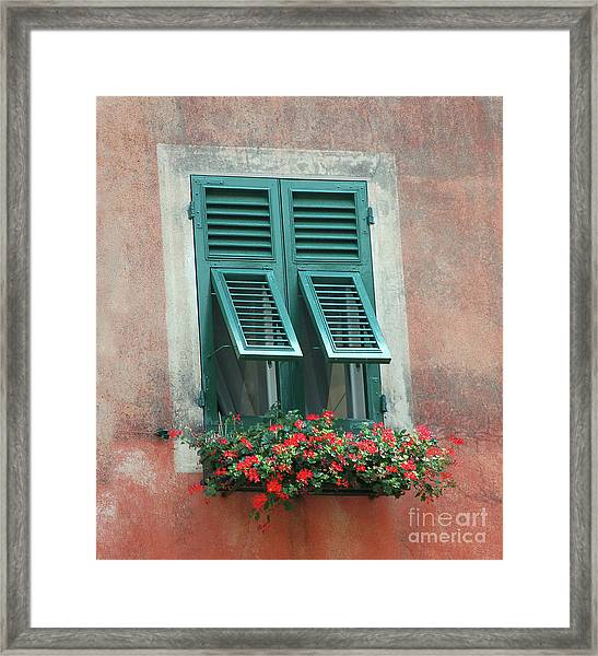 Faux  Painting Window  Framed Print