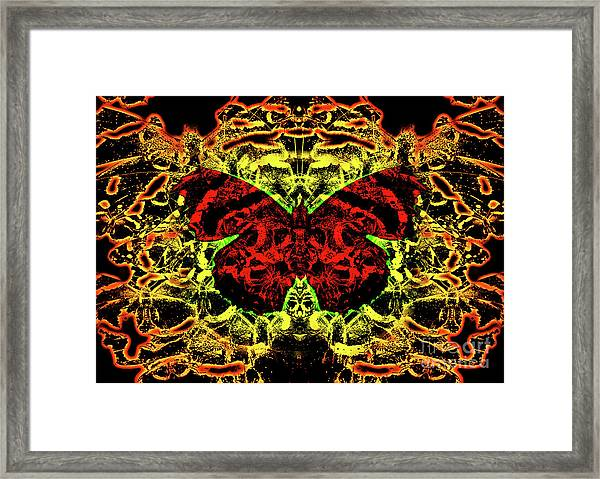 Fear Of The Red Admirals Framed Print