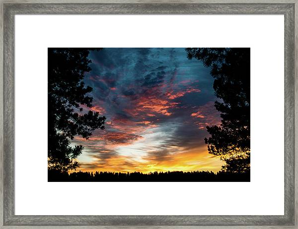 Framed Print featuring the photograph Fearless Awakened by Jason Coward