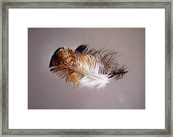 Feather And Shadow 2 Framed Print