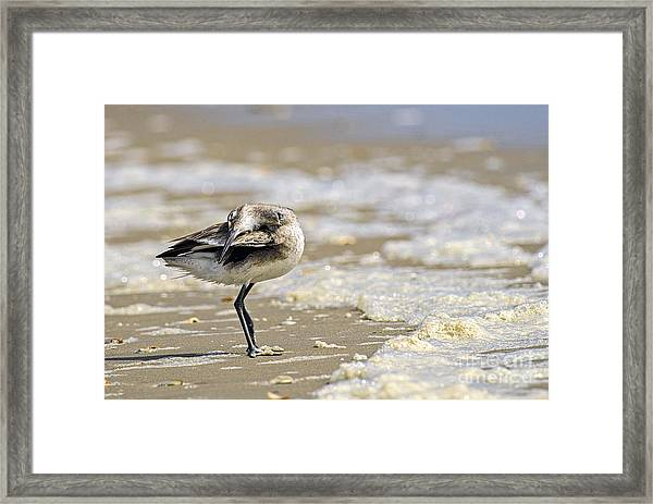 Feather Bed Framed Print