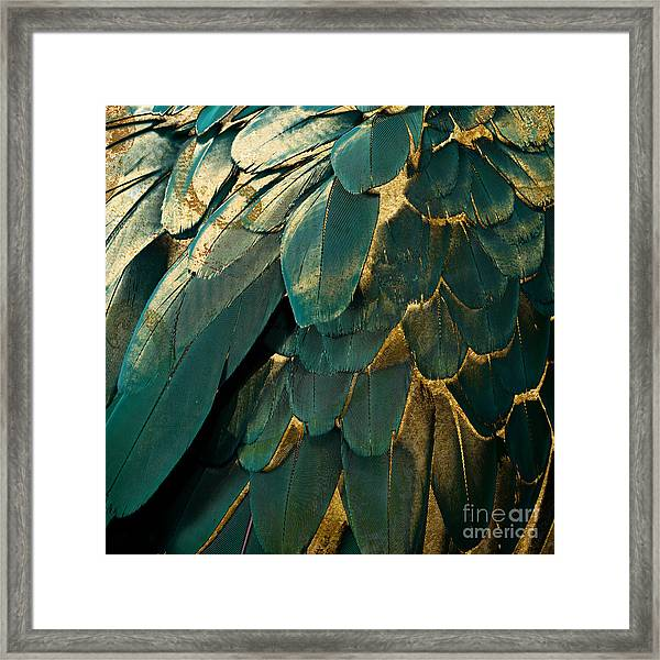 Feather Glitter Teal And Gold Framed Print