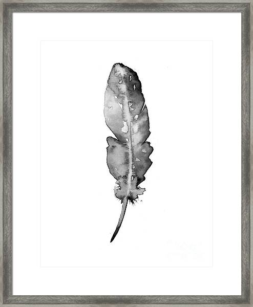 Feather Watercolor Fine Art Print Framed Print