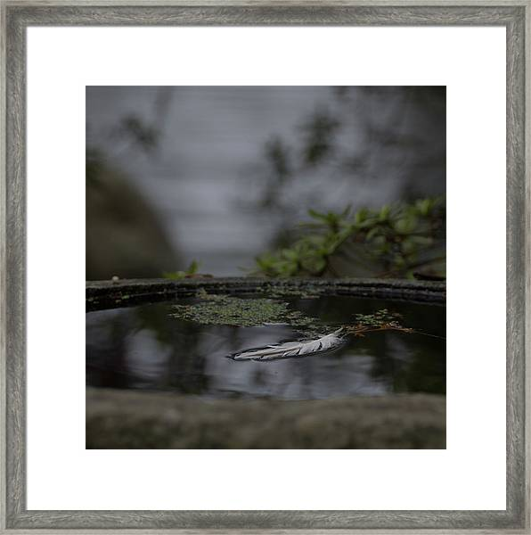 A Feeling Of Floating Weightlessly Framed Print