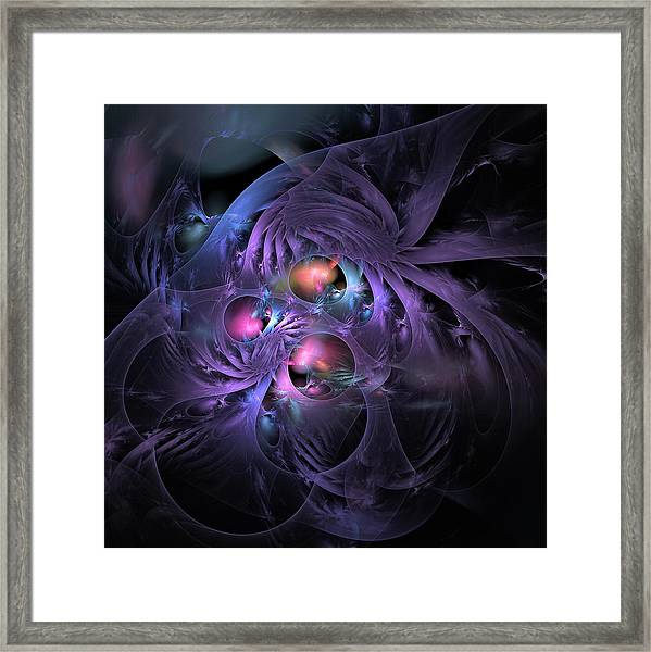 Feathered Cage Framed Print