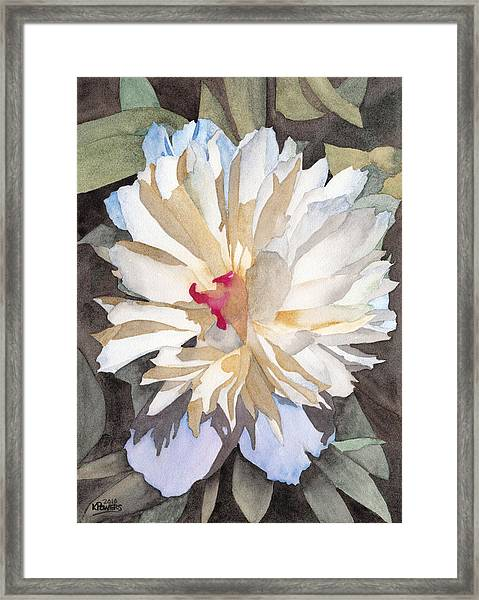 Feathery Flower Framed Print