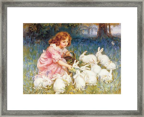 Feeding The Rabbits Framed Print