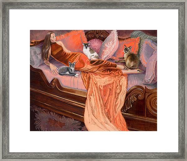 Feline Fashion Harem Framed Print by Barbara Tyler Ahlfield