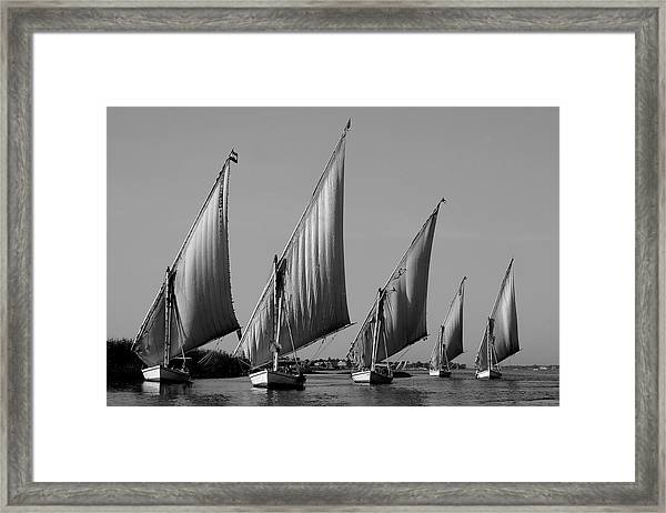 Feluccas On River Nile Framed Print
