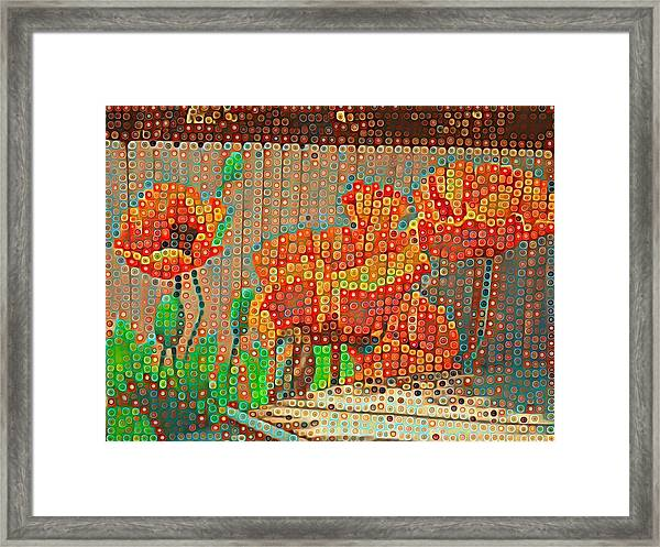 Fence Art Framed Print