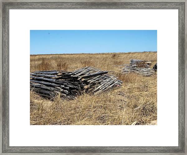Fence Bails Framed Print