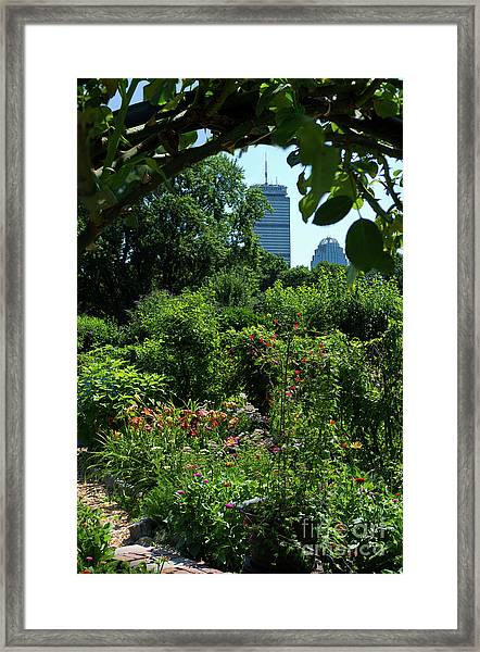 Fenway Victory Gardens In Boston Massachusetts  -30951-30952 Framed Print
