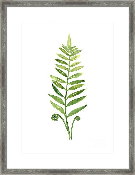 Fern Leaf Watercolor Painting Framed Print