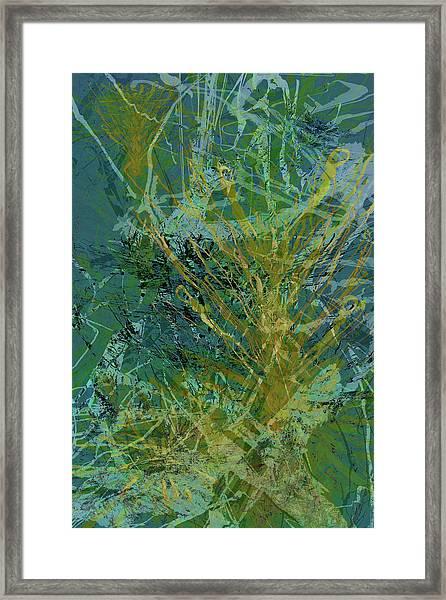 Fern Series 36 Framed Print