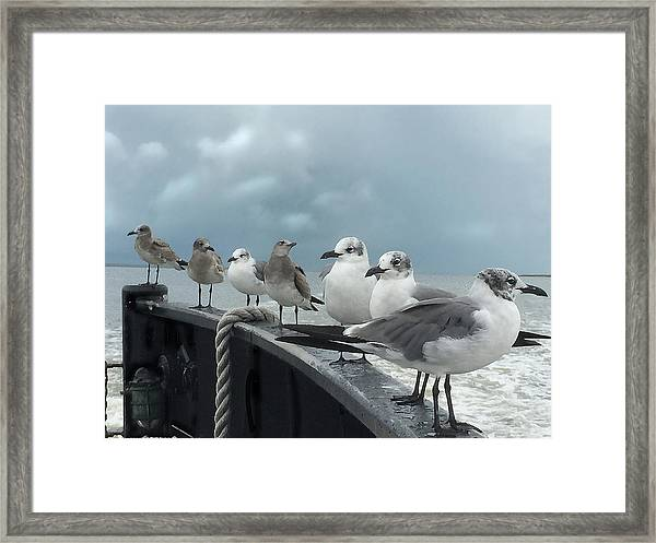 Framed Print featuring the digital art Ferry Passengers by Gina Harrison