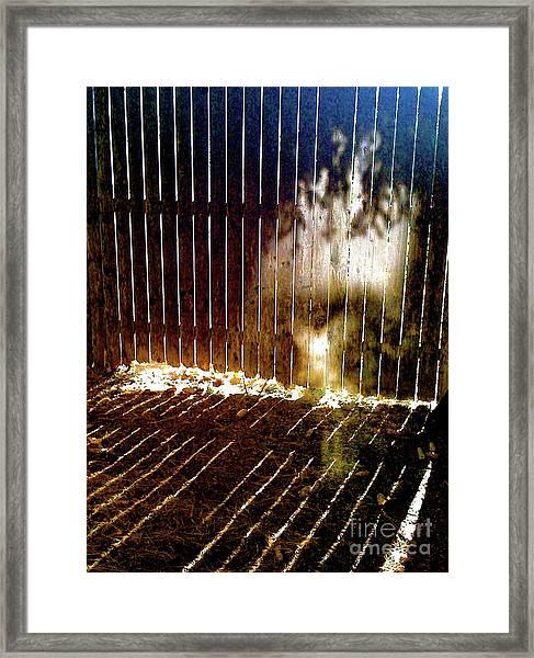Backyardvisit Framed Print