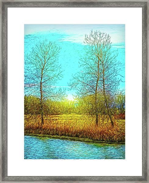Field In Morning Light Framed Print