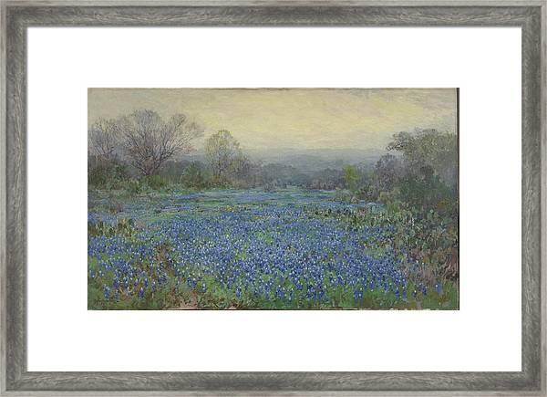 Field Of Bluebonnets Framed Print