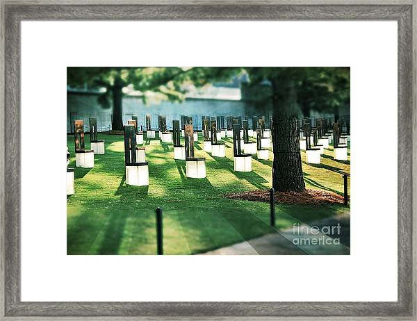 Field Of Empty Chairs Framed Print