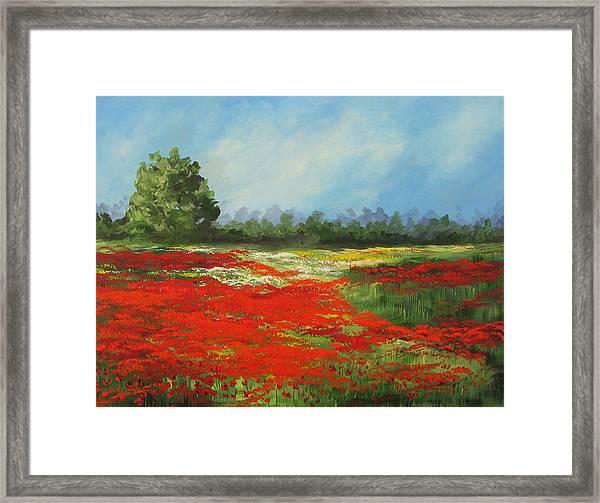 Field Of Poppies Viii Framed Print