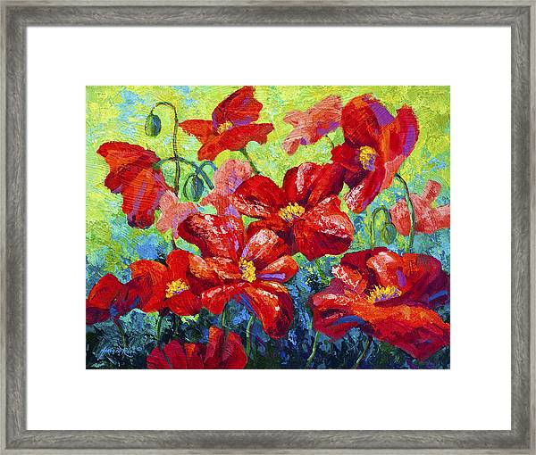 Field Of Red Poppies II Framed Print